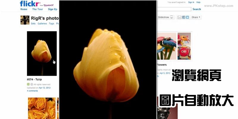 【工具】將滑鼠移動到圖片上「自動放大縮圖」,瀏覽、下載照片都方便。(Chrome、Firefox擴充外掛)
