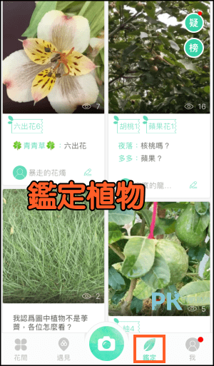 形色_辨識植物App5