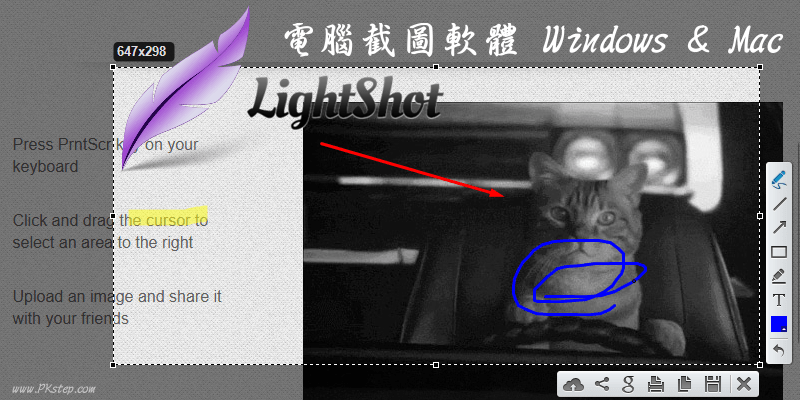 Lightshot_screenshots_download
