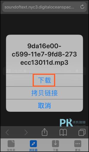 瀏覽器下載器2