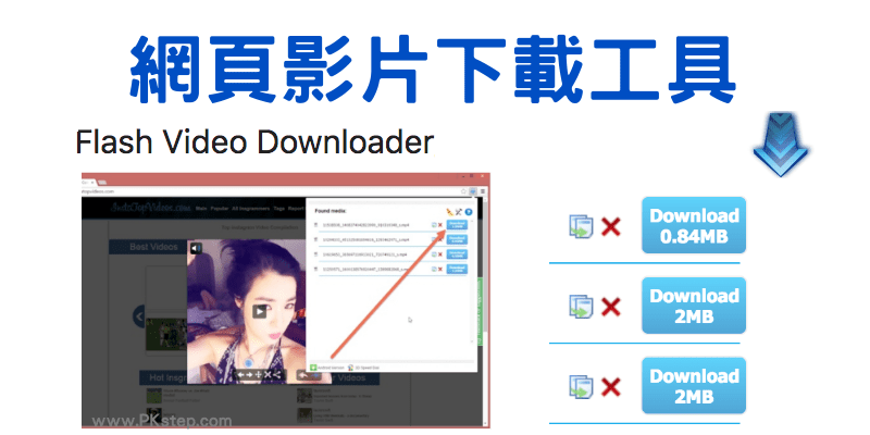 flash-viedeo-downloader