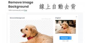 Remove. bg線上去背工具,AI自動去除圖片背景,100%免費且無浮水印!