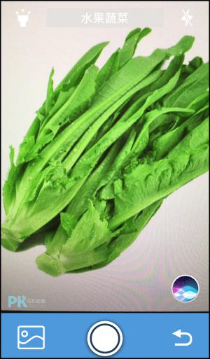 辨識全能王App-認識蔬菜3
