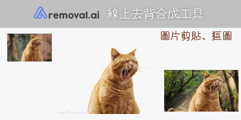 Removal-ai線上圖片剪貼摳圖