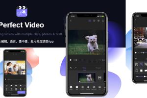 Perfect Video調整影片亮度App,對比度、曝光度、倒轉影片、去除背景、局部放大鏡…(iOS)